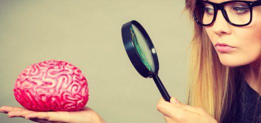 Jak probiotyki pomagają w stresie?