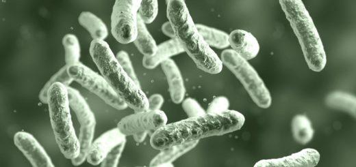 Mikrobiota i anemia