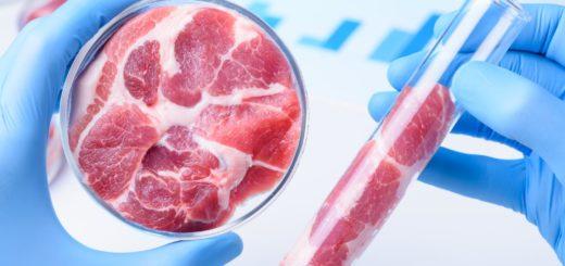 Czerwone mięso w badaniach