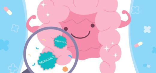 wpływ probiotyków na barierę jelitową