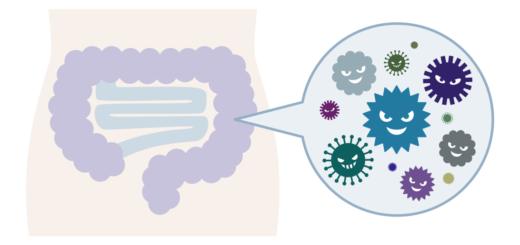 bakterie a wybory żywieniowe